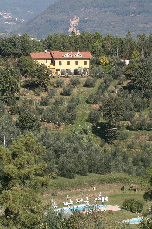 olivenolbrote500.JPG
