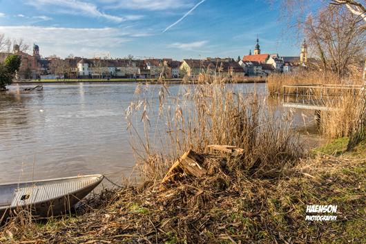 Der-Busch-ist-weg-Gartenschaugelände-Kitzingen