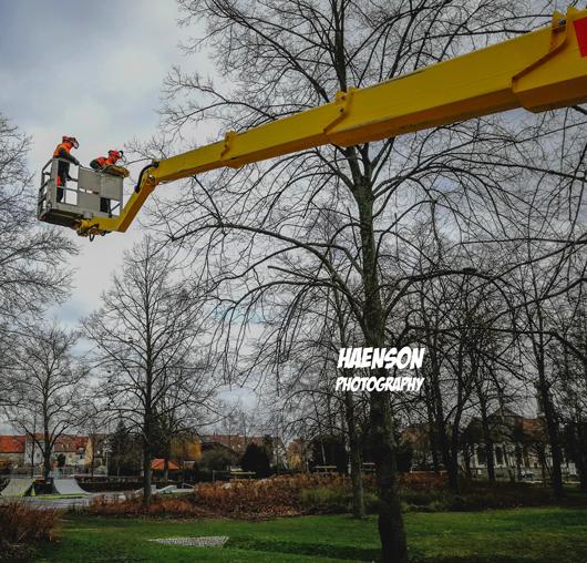 Gartenschaugelände-Kitzingen-2