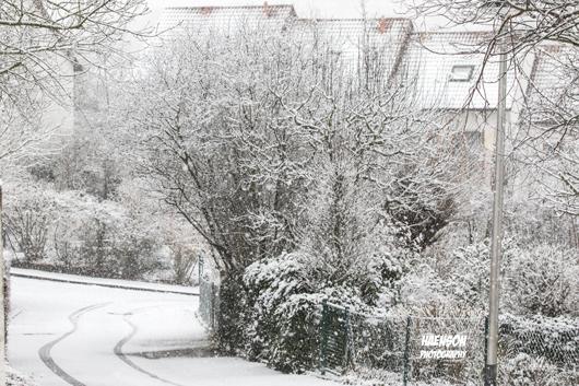 Der-Winter-2018-ist-zurück